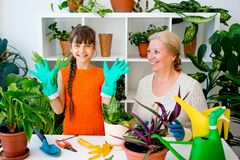 Grandmother and grandaughter. Are gardening together growing plants Stock Photo