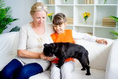 Grandmother and grandaughter. Are playing with a dog together Stock Images