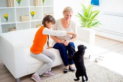 Grandmother and grandaughter. Are playing with a dog together Stock Photos