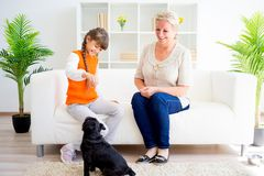 Grandmother and grandaughter. Are playing with a dog together Royalty Free Stock Images