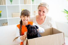 Grandmother and grandaughter. Are playing with a dog together Stock Photography