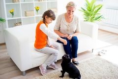 Grandmother and grandaughter. Are playing with a dog together Royalty Free Stock Photography
