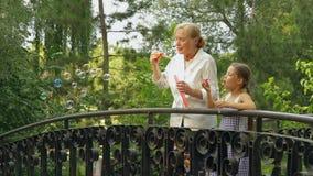 Grandmother And Grandchild On A Bridge stock video