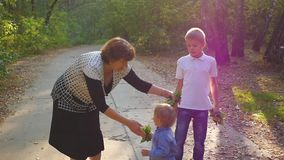 Grandmother with grandchildren playing in the Park stock video footage