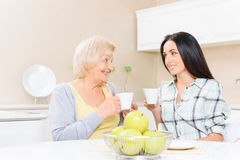 Grandmother and granddaughter drinking tea. Soft glance. Grandmother and granddaughter sitting in kitchen together with cups of tea and looking at each other Stock Image
