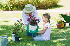 Grandmother and granddaughter engaged in gardening Royalty Free Stock Images