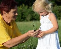 Grandmother and granddaughter holding a plant together. Grandmother and granddaughter holding a plant in hands together Royalty Free Stock Photography