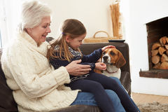 Grandmother And Granddaughter Relaxing At Home With Pet Dog Stock Images