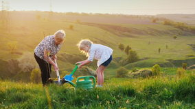 Grandmother and granddaughter together plant a tree. Against the background of a picturesque meadow and green hills stock footage