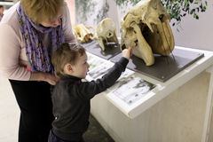 Grandmother with grandson in museum Stock Photos