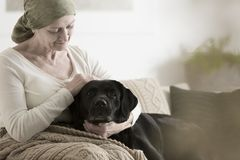 Grandmother with headscarf stroking dog. Sick grandmother with headscarf stroking dog while sitting on sofa at home Royalty Free Stock Image