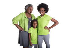 A grandmother and her 2 granddaughters Royalty Free Stock Photo