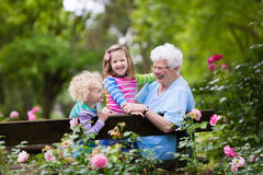 Grandmother and kids sitting in rose garden. Happy senior lady playing with little boy and girl in blooming rose garden. Grandmother with grand children sitting Royalty Free Stock Photos