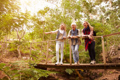 Grandmother, mother and daughter on a bridge in a forest stock photo