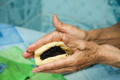 Grandmother prepares pies Stock Photography