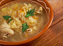 Grandmother's Sauerkraut soup Stock Image