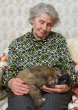 Grandmother sitting with cat on her hands. Ay home Royalty Free Stock Images