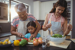 Grandmother teaching granddaughter to chop vegetables in kitchen Stock Images