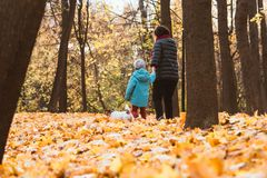 Grandmother walking with grandson and dog at fall autumn park