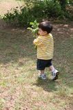 Grandpa d'aiuto del ragazzo nel giardino fotografia stock libera da diritti