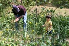 Grandpa de ayuda del muchacho en el jardín fotografía de archivo