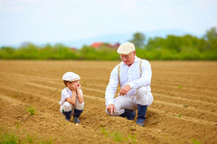 Grandpa explaining his grandson the way plants are grow Stock Photos