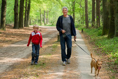 Grandpa and grandchild. Are walking the dog in the forest royalty free stock photography