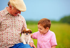 Grandpa and grandson playing with little puppy, summer outdoors Stock Images
