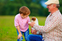Grandpa and grandson playing with little puppy, summer outdoors Stock Photography