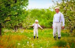 Grandpa with grandson walking through the spring garden Royalty Free Stock Photos