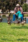 Grandpa helps happy little girl feed ducks at lake Stock Photo
