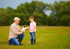 Grandpa presenting little puppy to excited grandson Stock Photos