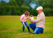 Grandpa presenting little puppy to grandson, playing with dog Royalty Free Stock Photos
