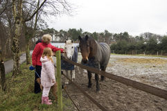 Grandparent and grandchild petting the horses Royalty Free Stock Photo