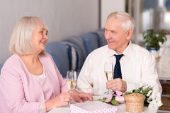 Grandparents celebrating anniversary stock photo