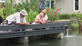 Grandparents with child feeding fish in pond stock video