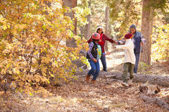 Grandparents With Children Walking Through Fall Woodland Royalty Free Stock Images