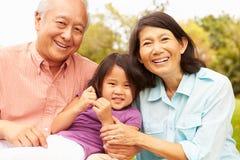 Grandparents Cuddling Granddaughter In Park Stock Image