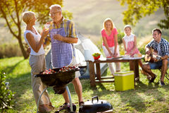 Grandparents drink wine and enjoying picnic royalty free stock images