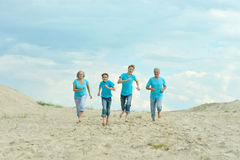 Grandparents with grandchildren on beach royalty free stock image