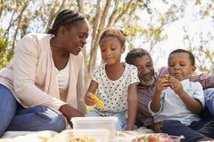 Grandparents And Grandchildren Enjoy Picnic In Park Together stock images