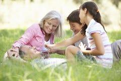 Grandparents With Grandchildren Relaxing In Summer Field stock photo