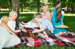 grandparents and grandchildren are resting in the park. horizontal. focus on the chessboard royalty free stock photo