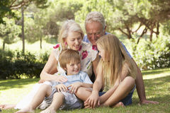 Grandparents And Grandchildren Sitting In Park Together Stock Image