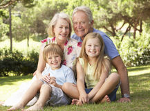 Grandparents And Grandchildren Sitting In Park Together Royalty Free Stock Photography