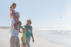 Grandparents and grandchildren walking on sunny beach Royalty Free Stock Photography