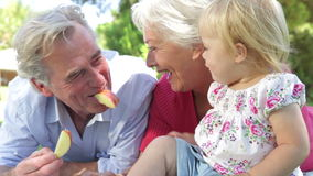 Grandparents And Granddaughter Enjoying Picnic Together stock video