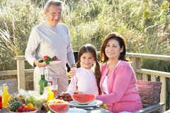 Grandparents And Granddaughter Having Outdoor Barbeque Stock Images