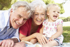 Grandparents And Granddaughter In Park Together Stock Images