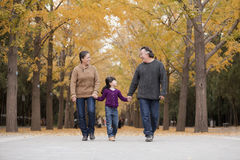 Grandparents and granddaughter playing in park Royalty Free Stock Photos